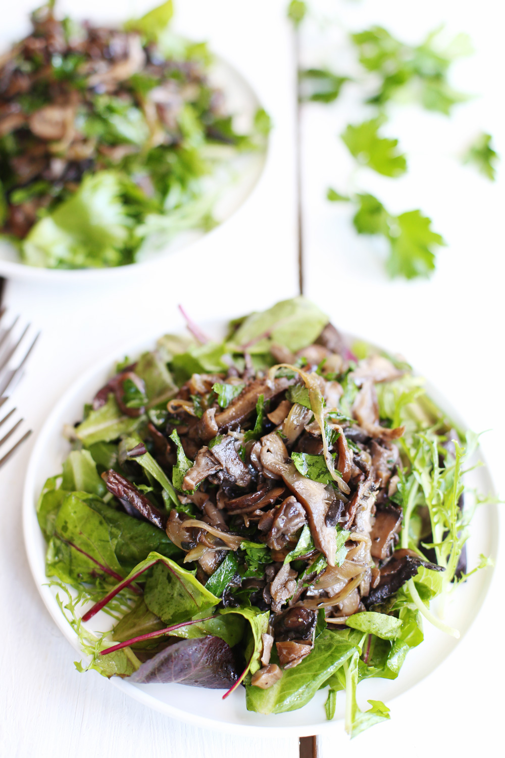 Mixed Mushrooms Salad