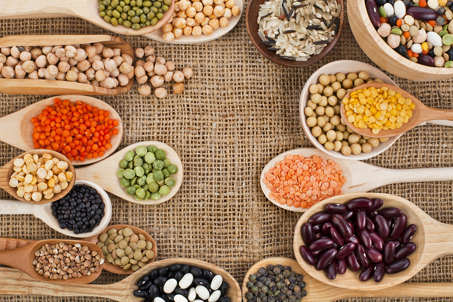 Vegan Protein Sources and Meat Substitutes